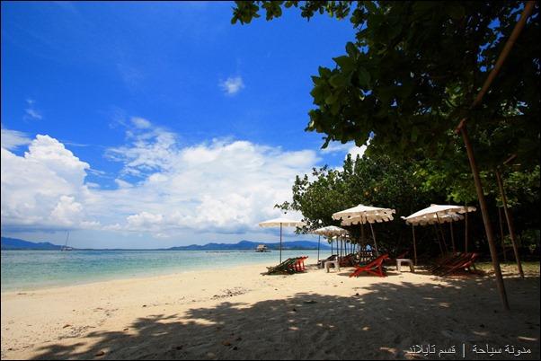 جزيرة رونق ياي