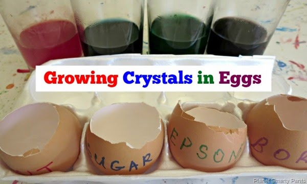 Growing Crystals In Eggs with 4 different crystal forming solutions