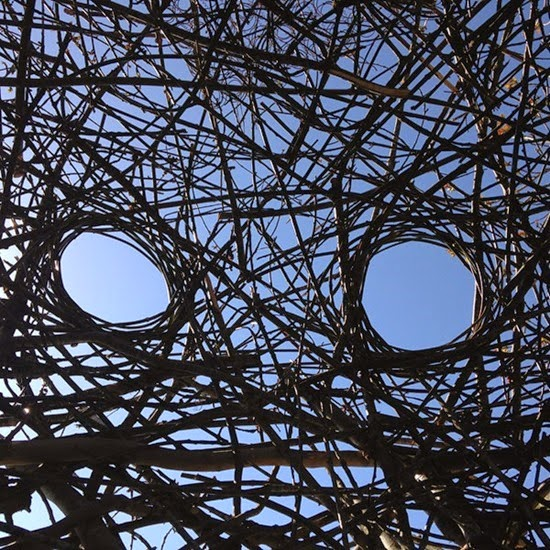 Ninho gigante de Hannes Wingate 03