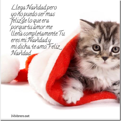 feliz navidad novios
