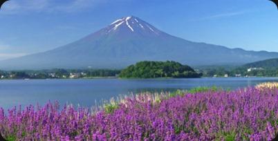 Monte Fuji, vinho e outros encantos fizeram de Yamanashi a melhor província para viver no interior