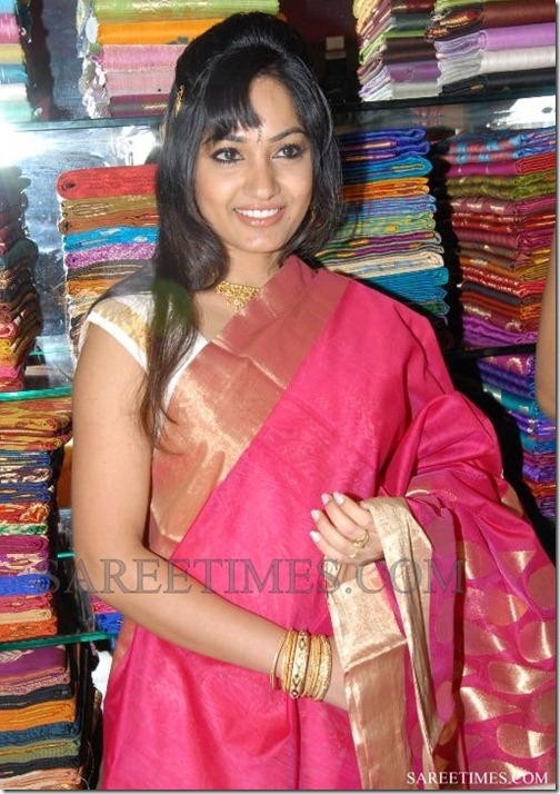 Madhavi_Latha_Saree (5)