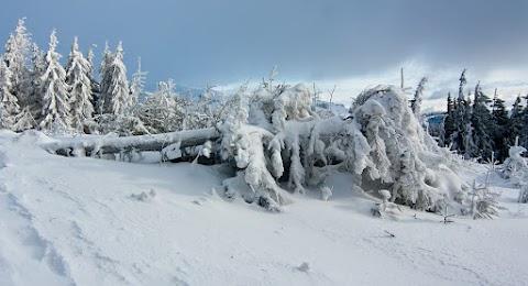 ... snehu dnes bolo na šľapanie až až ...