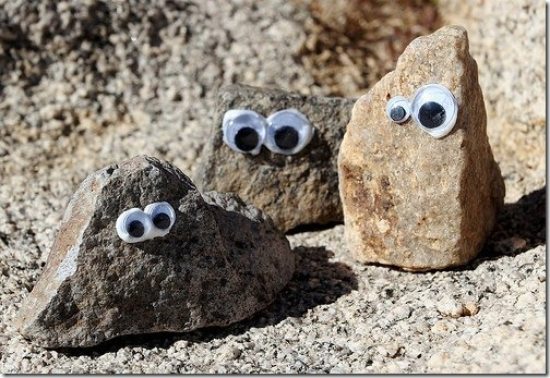 piedras con ojos