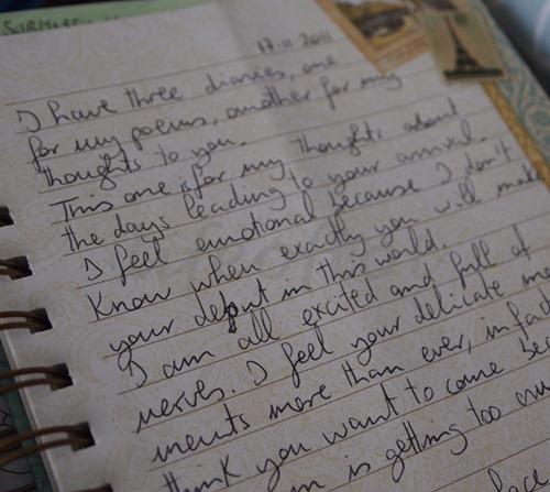 diary17112011