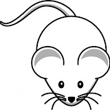 e3472bc34bba579671a4babd1bd9e5bd-simple-cartoon-mouse-clip-art.jpg
