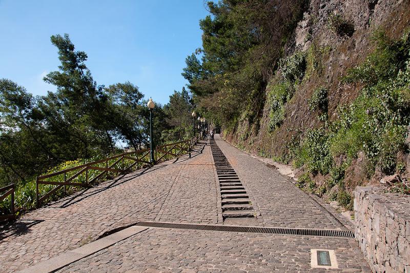 24. Обратная дорога всегда почему-то быстрее. Канатная дорога. Фуншал. Мадейра. Португалия. Круиз на Costa ConCordia.
