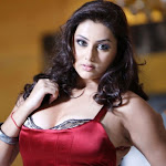 Namitha Hot (20).jpg