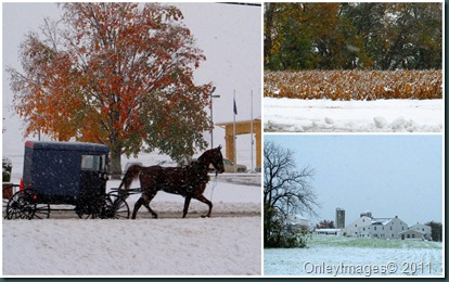 PA snow collage