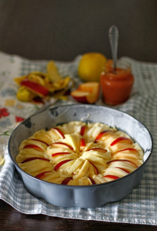 torta di mele e melecotogne
