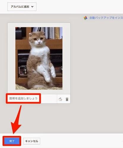 アップロード画像確認