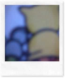 Foto0019