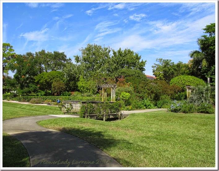 11-20-butterfly-garden2