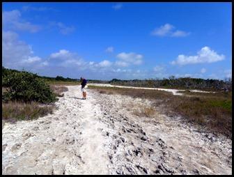 14b -footprints in the mud