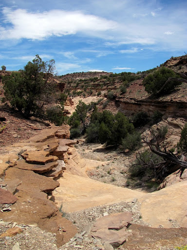 Contact between the Carmel Formation and the Navajo Sandstone