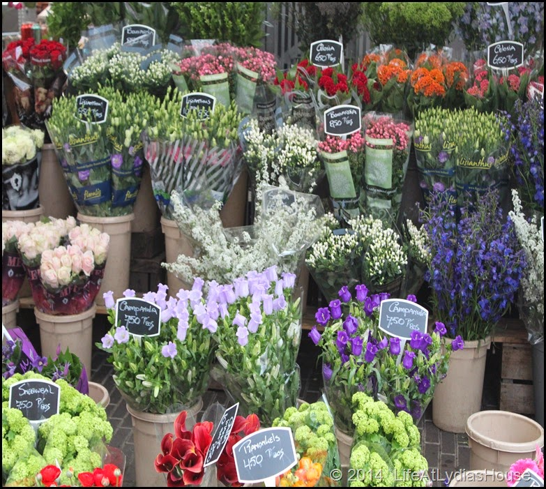 flower market 7
