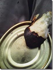 Kulita ubi yang telah sebagian terbuka