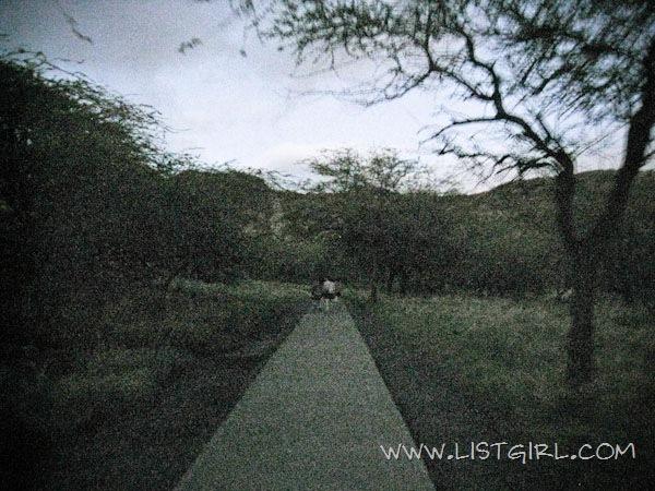 20111215-IMG_9342_600