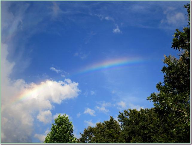 RainbowIMG_4827