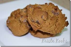 Krista Kooks Gluten Free Alton Brown Chocolate Chip Cookies