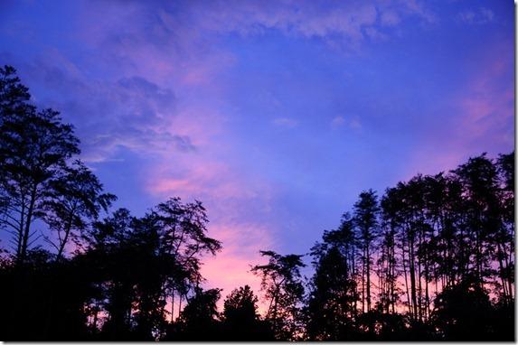 PNP sunset621-8