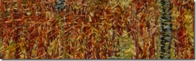 fireweed close up
