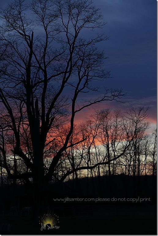 sunset_3318
