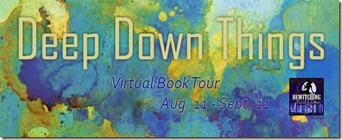 DDT Tour 851 x 315 FB 2_thumb[1]