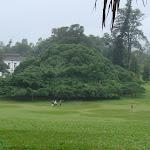 Shri-Lanka (25).jpg