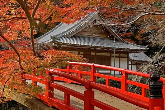 Прекрасный_храм_осенью,_Япония