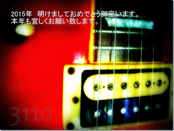 x2015_0103-3110a