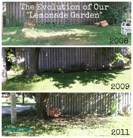Lemonade Garden Evolution Collage WM