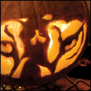 pumpkin-tiger-eyes-l