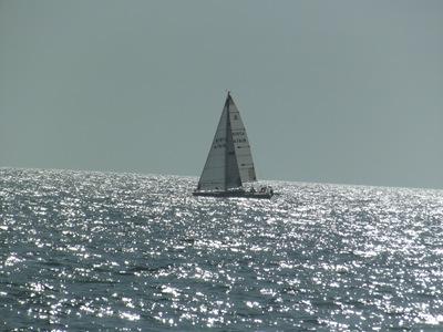 South Creek Kayak & Casey Key Beach 066