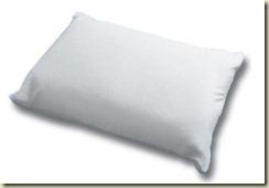 17736-banner-pillow2[1] (2)