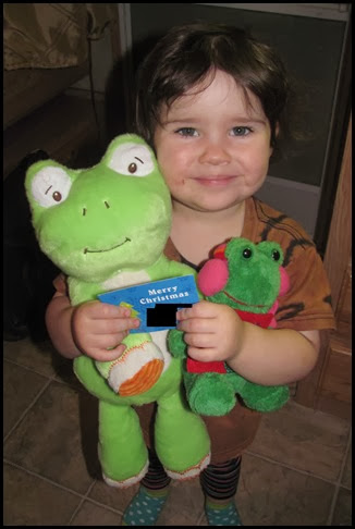 Cindy frogs