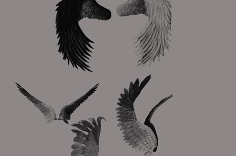 Pinceles de alas de ángel en contraste