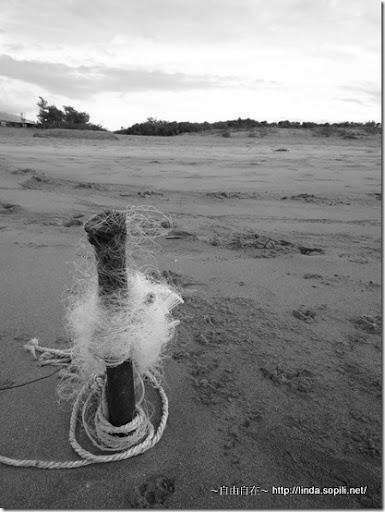 沙崙海水浴場-漁網柱子