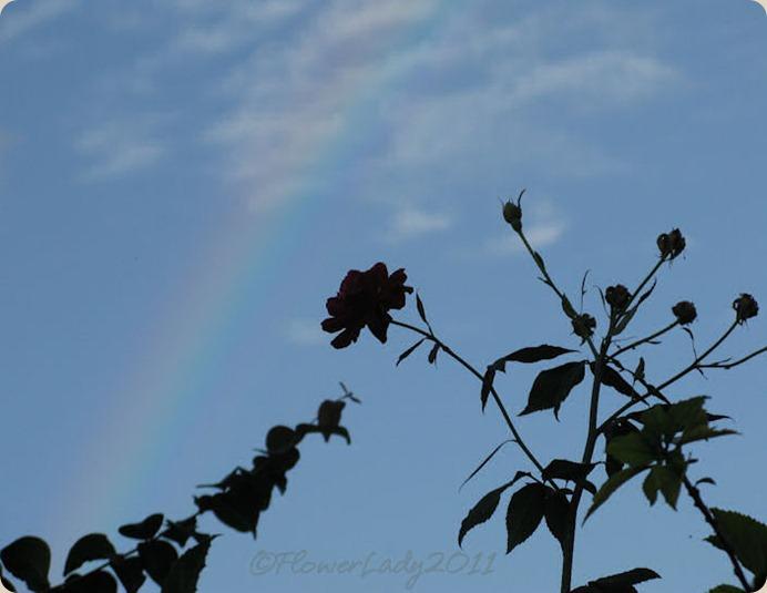 09-28-rainbow13
