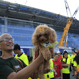 Pet Express Doggie Run 2012 Philippines. Jpg (273).JPG