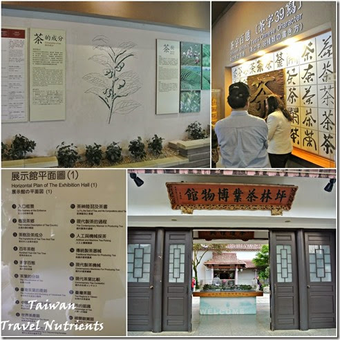 坪林茶葉博物館 (4)