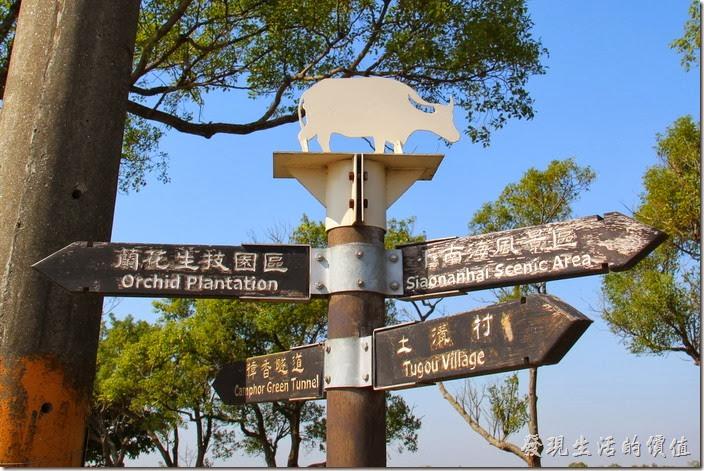 台南-土溝村。其實我們第一次來土溝的時候,就是在這附近繞了好幾圈。