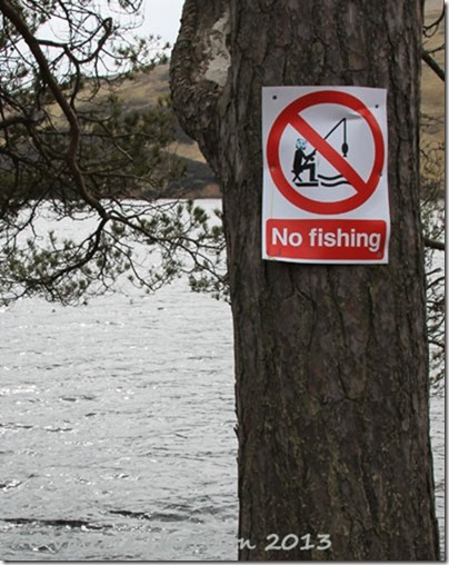 10-no-fishing