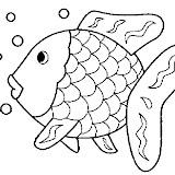 Der_Regenbogenfisch.jpg