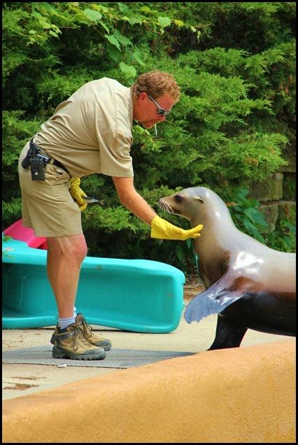 Zoo4 403