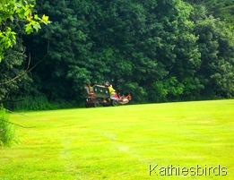 6. mower blur-kab