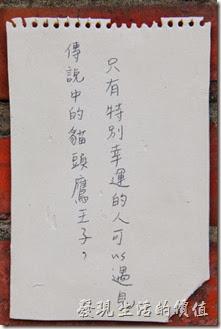台南-321巷藝術聚落。傳說中的貓頭鷹王子,只有特別幸運的人才可以遇見。