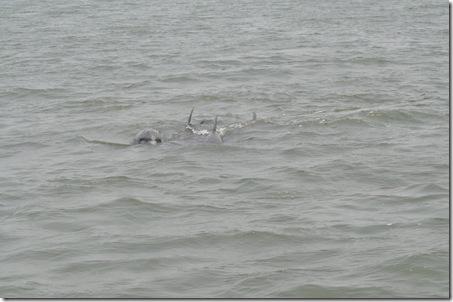 06-06-11 Tybee Beach 015