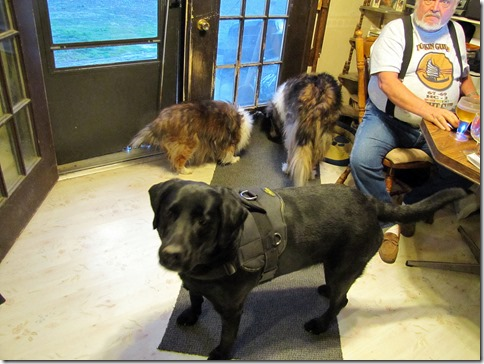 Rigg's,Duke,&Duchess03-12-13a