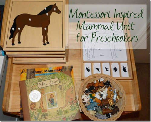 Mammals Unit at Homeschool Mo 2